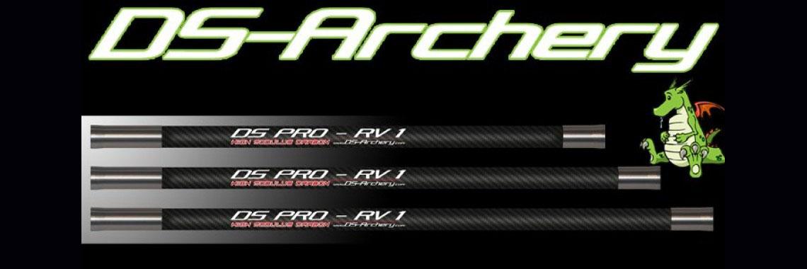 DS-Pro RV1