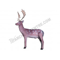 Eleven Fallow Deer (with insert)