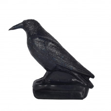 Franzbogen Carrion Crow