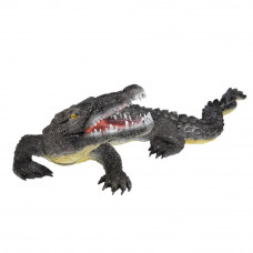 Franzbogen Alligator Big