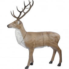 Franzbogen Red Deer