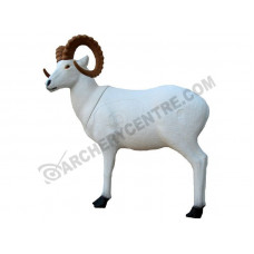 SRT Dall Sheep