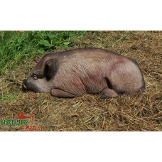 Natur Foam WILD BOAR - LYING