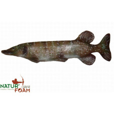Natur Foam PIKE