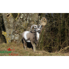 Natur Foam BIGHORN SHEEP - STANDING